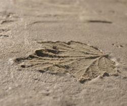 Обработка бетонной заливки